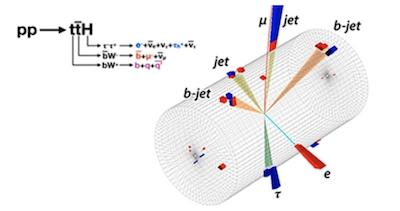 Bosone higgs quark